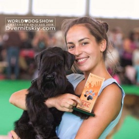 09.08.2018 Benelux Winner!, 11.08.2018 speciality show Amsterdam, Netherlands